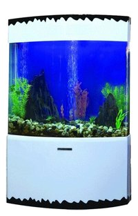 DECORATIVE CURVED AQUARIUM