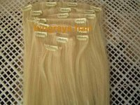 Luxury Blonded Silky Straight Remy Clip in Hair