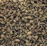 Ajwain Oil