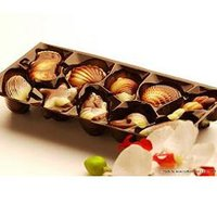 Roasted Cashew Premium Chocolates