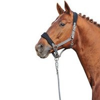 Fleece Padded Halter