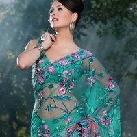 Embroidered Shaded Green and Peach Saree