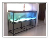 Home Aquariums