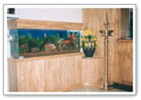 Showcase Mounted Aquariums