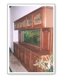 Decorative Aquariums