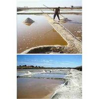 Salt Pans Sheet