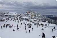Honeymoon Packages In Shimla