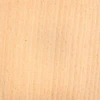 White-Beech Plywood