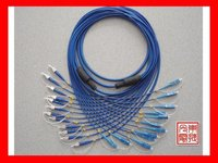 12 Cores Armored Fiber Optic Patch Cord