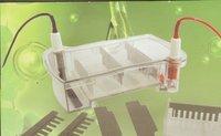 Electrophoresis Apparatus