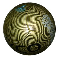 Soccer Ball 6 Panel