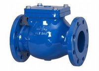 DIN Cast Iron F6 Swing Check Valve