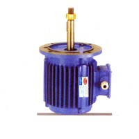 Cooling Towers Motors (Macwel)