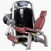 Seated LED Extension Fitness Equipment