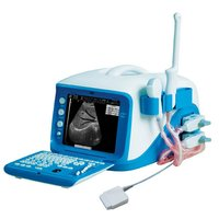 Portable Digital Ultrasound Scanner (CX6000)