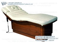 Luxury Salon Electric Massage Bed With Music & Vibration (08d04-1)
