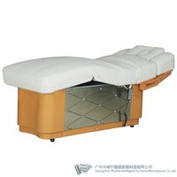 Luxury Electric Beauty Bed