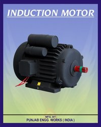 Industrial Induction Motor