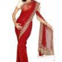 Designer Net Pallu Saree