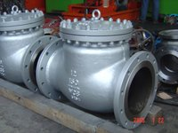 Swing Check Valve
