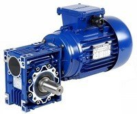 ESV Series Reducers