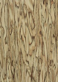 Fundermax Exterior Panels-Art-Strands-Natural