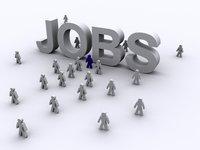 Job Consultant Service