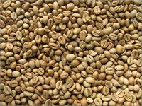 Robusta Coffee Beans