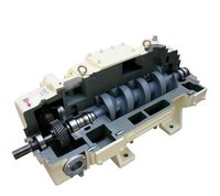 Everest Dry Screw Vacuum Pump
