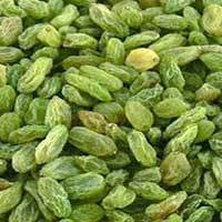 Green Raisins