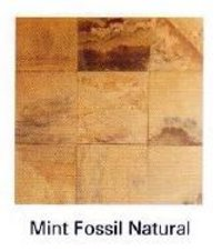 Mint Fossil Natural Stone