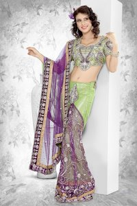 Embroidered Net Lehenga Saree