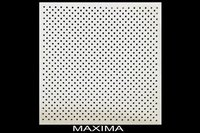 Ceiling Panels (Maxima)