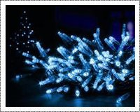 Led Holiday Light