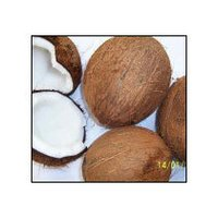 Fresh Semi Husked Coconut