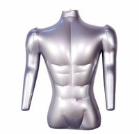 Male Torso With Arms Mannequin