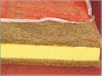 Coir Foam Sandwich Mattresses