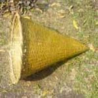 Right Circular Cone