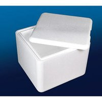 Moulded EPS Boxes