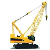 Hydraulic Crawler Cranes Rental Services