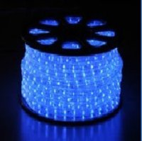 2 Wire Vertical LED Rope Light (Blue)