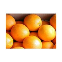 Fresh And Juicy Oranges