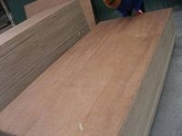 Construction Commercial Plywood