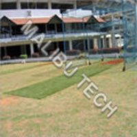 Cricket Surface