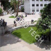Campus Artificial Grass