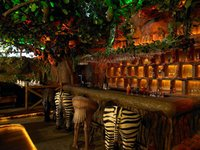 Forest Ambience Bar Theme