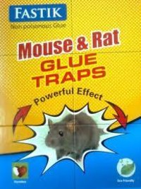 Fastik Rat Glue Trap