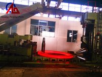 Forging Manipulator (T31-10)