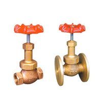 Steam Union Bonnet Globe Valves