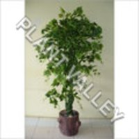 Artificial Green Mapple Tree